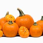 pumpkins-cluster